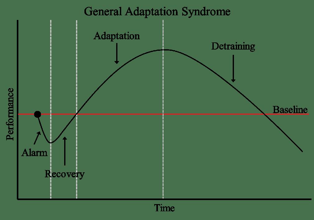 General Adaptation
